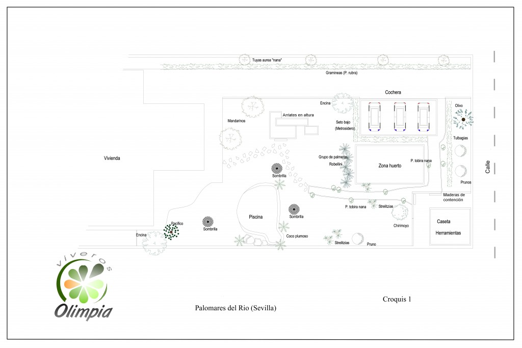 Diseño jardín. Plano. Croquis