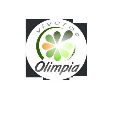 FACEBOOK Viveros Olimpia